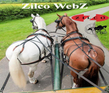 Zilco WebZ Pair rear Carriage Driving Harness
