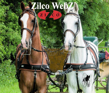 Zilco WebZ Pair Front Carriage Driving Harness