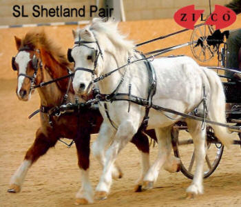 Zilco SL Pair Horse Harness