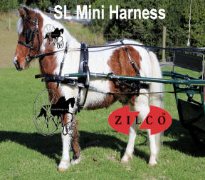 Zilco SL Miniature Horse Harness