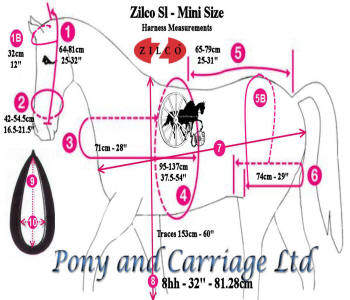 miniature Horse Harness Measurements