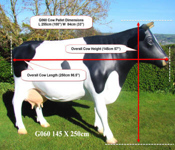 Life Size Cow Modle Measurements