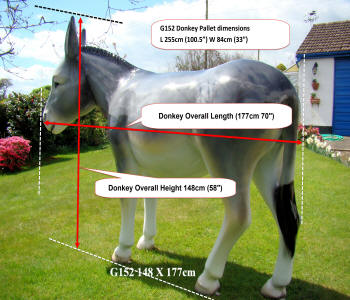 Life Size Donkey Model G152 Shipping Measurements