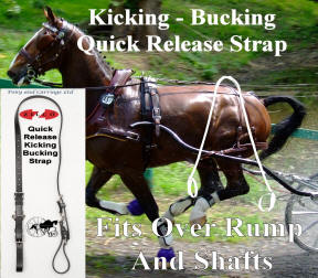 Carriage Driving  Kicking - Bucking Strap